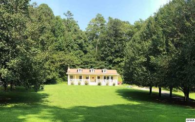 Sevierville Single Family Home For Sale: 3154 Wears Dr