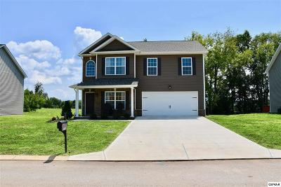 Sevierville Single Family Home For Sale: 2676 Southwinds Cir