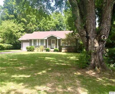 Pigeon Forge TN Single Family Home For Sale: $160,000