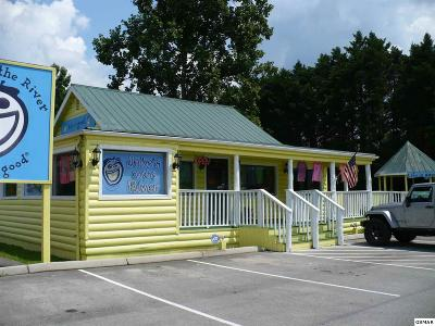 Blount County Commercial For Sale: 8215 State Hwy. 73