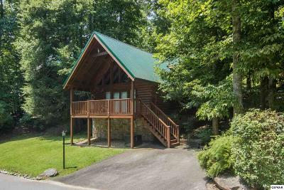 Gatlinburg Single Family Home For Sale: 623 Black Bear Falls Way