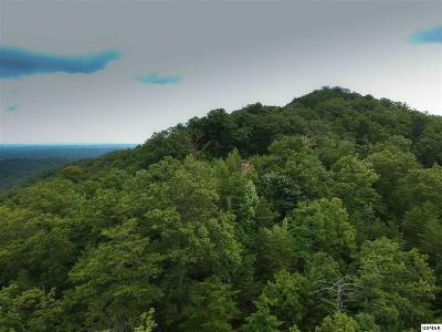 Sevier County Residential Lots & Land For Sale: Lot#8 Overholt Trail
