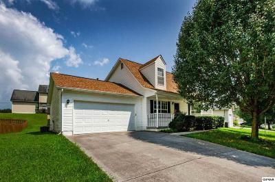 Knoxville Single Family Home For Sale: 7327 Carowinds Lane