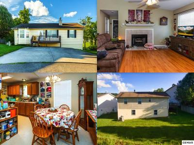 Knoxville Single Family Home For Sale: 7520 Rising Brooks Lane