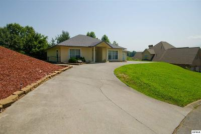 Pigeon Forge Single Family Home For Sale: 552 Kings Hills Blvd