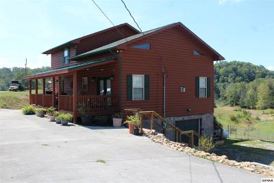 Sevierville Single Family Home For Sale: 1339 Parrotts Chapel Rd.