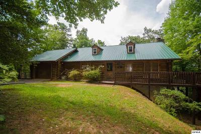Sevierville Single Family Home For Sale: 904 Ski View Ln