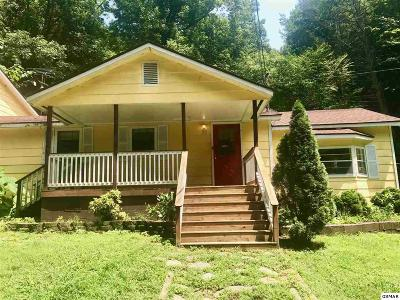 Sevierville Single Family Home For Sale: 1845 Treebeard Way
