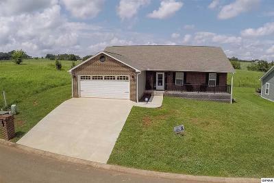 Sevierville Single Family Home For Sale: 1243 Lori Ellen Court