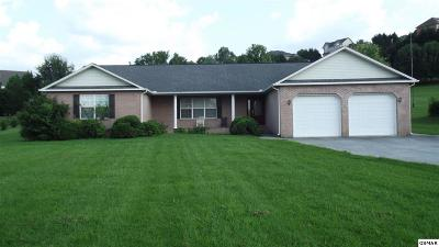 Sevierville Single Family Home For Sale: 1939 Old Neport Highway