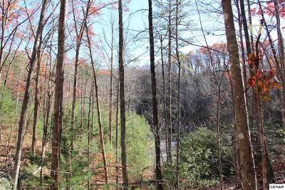 Sevier County Residential Lots & Land For Sale: Lot 29e Cool Water Lane