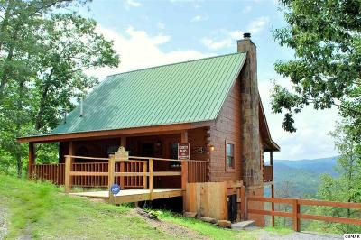 Sevierville TN Single Family Home Sale Pending: $255,000