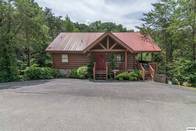 Pigeon Forge Single Family Home For Sale: 2424 Cobbler Way