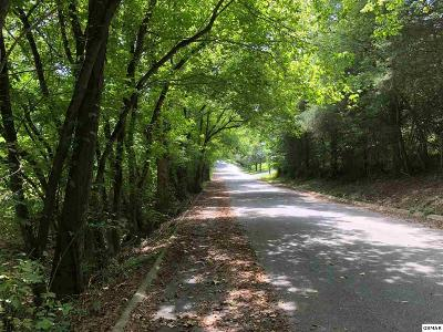 Sevier County Residential Lots & Land For Sale: 840 Delight Ln