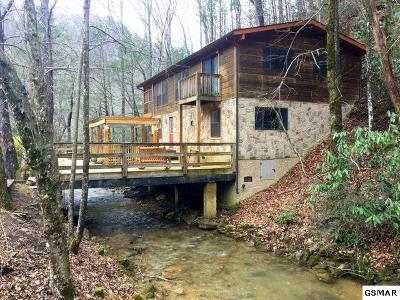 Sevierville Single Family Home For Sale: 3161 N Clear Fork Rd
