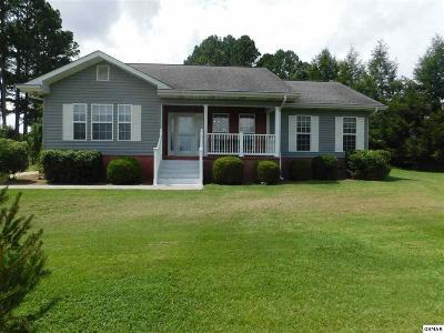 Sevierville Single Family Home For Sale: 237 E Hardin Ln