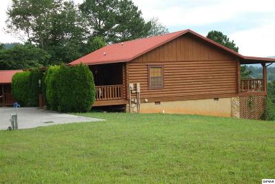 Sevierville Single Family Home For Sale: 3424 Crockett Hills Lane