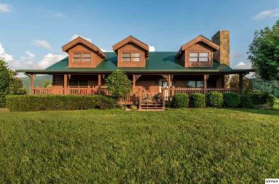 Sevierville Single Family Home For Sale: 3114 Jh Headrick Dr