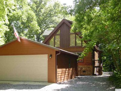Sevierville Single Family Home For Sale: 3529 Walker Way