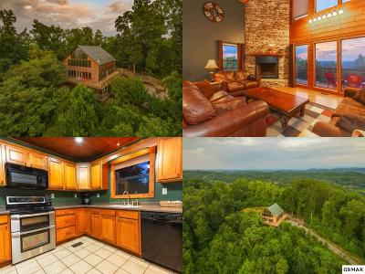 Sevierville Single Family Home For Sale: 880 Indian Gap Road