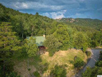 Sevierville Single Family Home For Sale: 1555 Trappers Ridge Lane