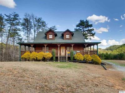 Sevierville Single Family Home For Sale: 1430 Nicoha Blvd