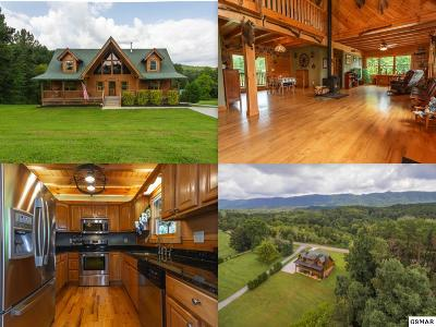 Maryville Single Family Home For Sale: 4405 Six Mile Road
