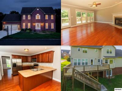 Knoxville Single Family Home For Sale: 8714 Brookhaven Drive