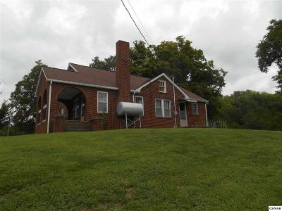 Sevierville Single Family Home For Sale: 505 Lane Hollow Rd