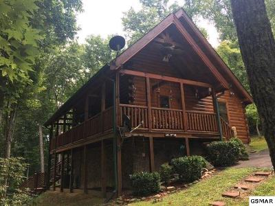 Sevierville Single Family Home For Sale: 1843 Laurel Valley Way
