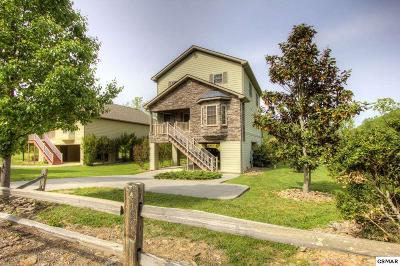 Sevierville Single Family Home For Sale: 3116 Cherokee Valley Dr