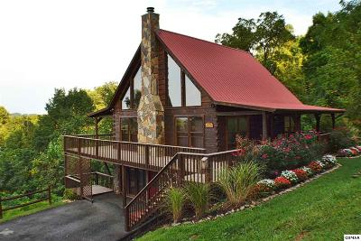 Sevierville Single Family Home For Sale: 1608 Bench Mountain Way