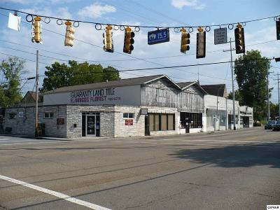 Sevierville Commercial For Sale: 200 Parkway