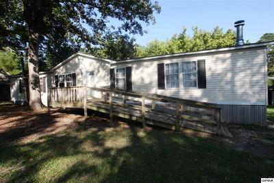 Sevierville Single Family Home For Sale: 1906 Avenue B
