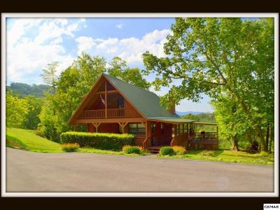 Sevierville Single Family Home For Sale: 1640 Bench Mountain Way
