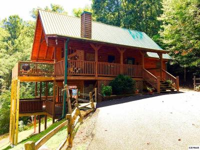 Sevierville Single Family Home For Sale: 3514 Olde Tyme Way