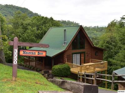 Sevierville Single Family Home For Sale: 3550 Olde Tyme Way