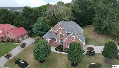 Dandridge Single Family Home For Sale: 132 Scenic Shores Drive