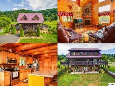 Sevierville Single Family Home For Sale: 2149 Waldens Creek Road