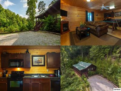 Sevierville Single Family Home For Sale: 2823 Spurling Hill Way