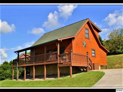 Pigeon Forge Single Family Home For Sale: 429 Keegan Drive