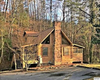 Pigeon Forge Single Family Home For Sale: 750 Kings Hills Blvd