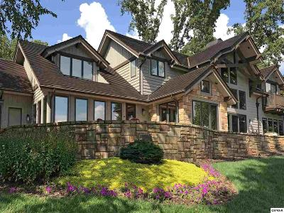 Dandridge Single Family Home For Sale: 1006 Enchanted Drive