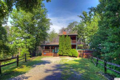 Sevierville Single Family Home For Sale: 2114 Rabbit Point Way