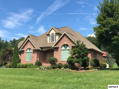 Sevierville Single Family Home For Sale: 3373 Clear Valley Dr