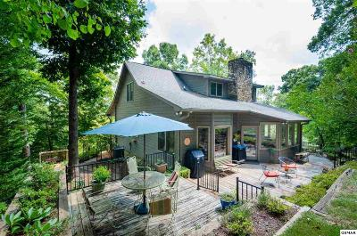 Sevierville Single Family Home For Sale: 296 Lane Hollow Road