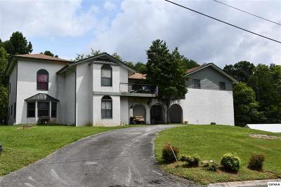 Pigeon Forge Single Family Home For Sale: 4059 Hitching Post Rd