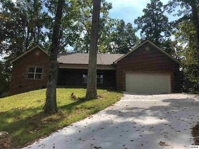 Sevierville Single Family Home For Sale: 2509 Frair Wood Ln