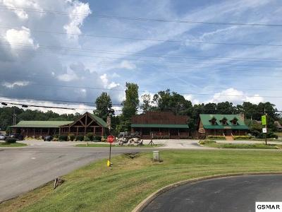 Sevierville Commercial For Sale: 3202 Wears Valley Rd