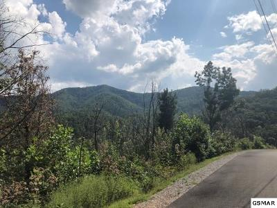 Residential Lots & Land For Sale: 1563 Mountain Dreams Way
